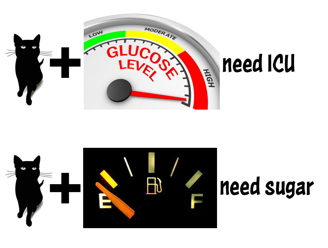 Diabetes and glucose management. - Insulin types, glucose management, and drug classes used for type 2 diabetes (aka NIDDM).