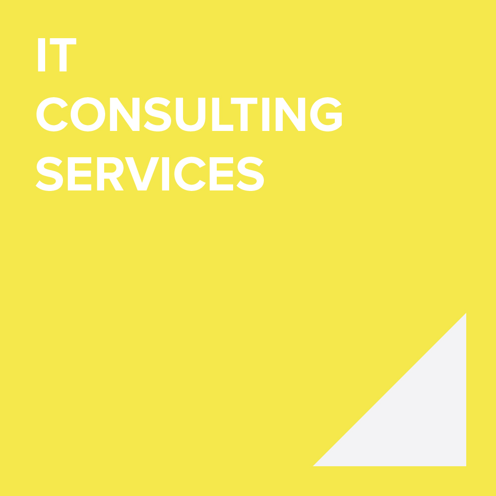 IT CONSULTING SERVICES