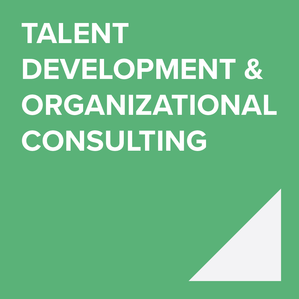 TALENT DEVELOPMENT & ORGANIZATIONAL CONSULTING