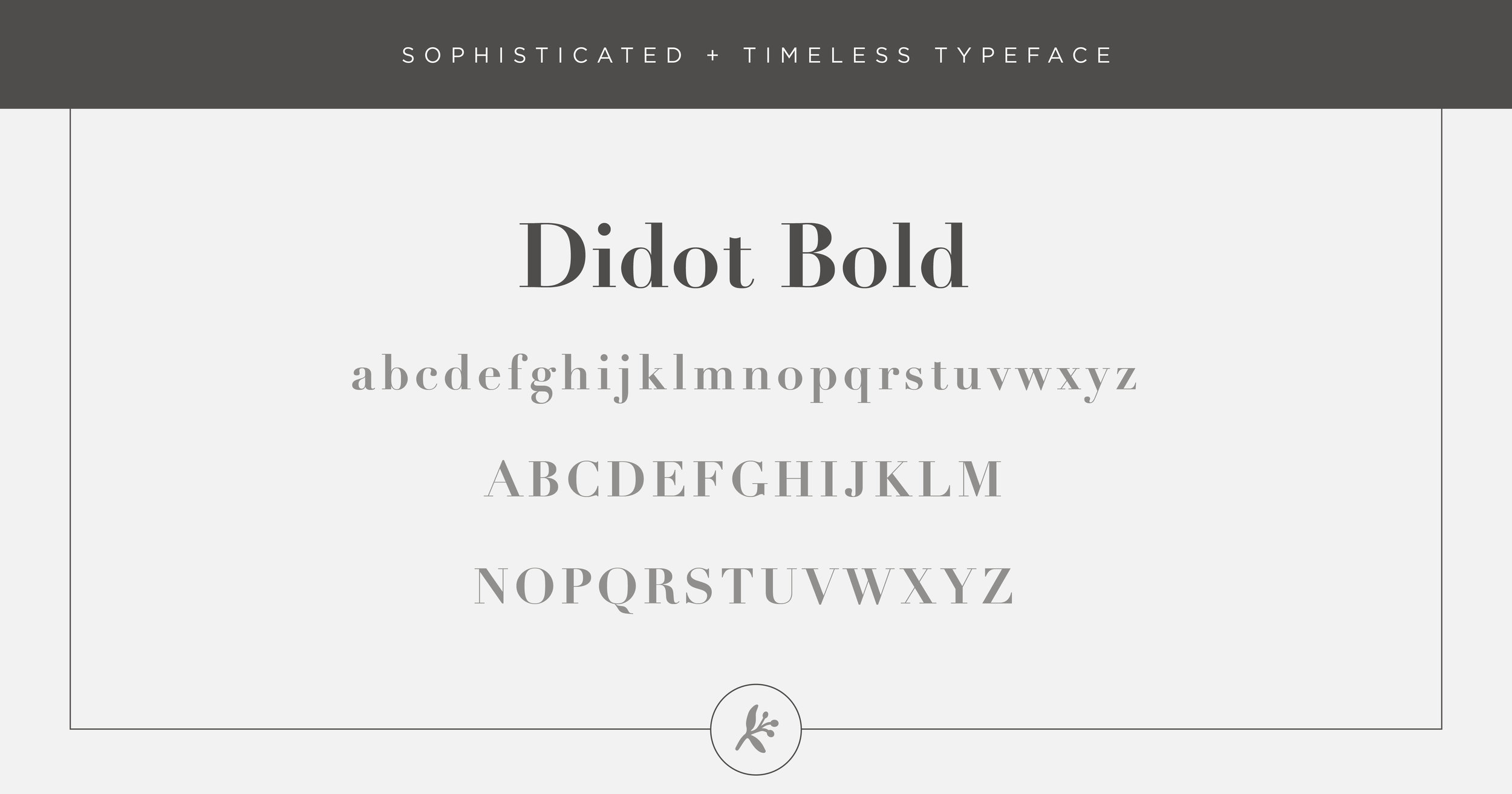 Sophisticated Timeless Typeface