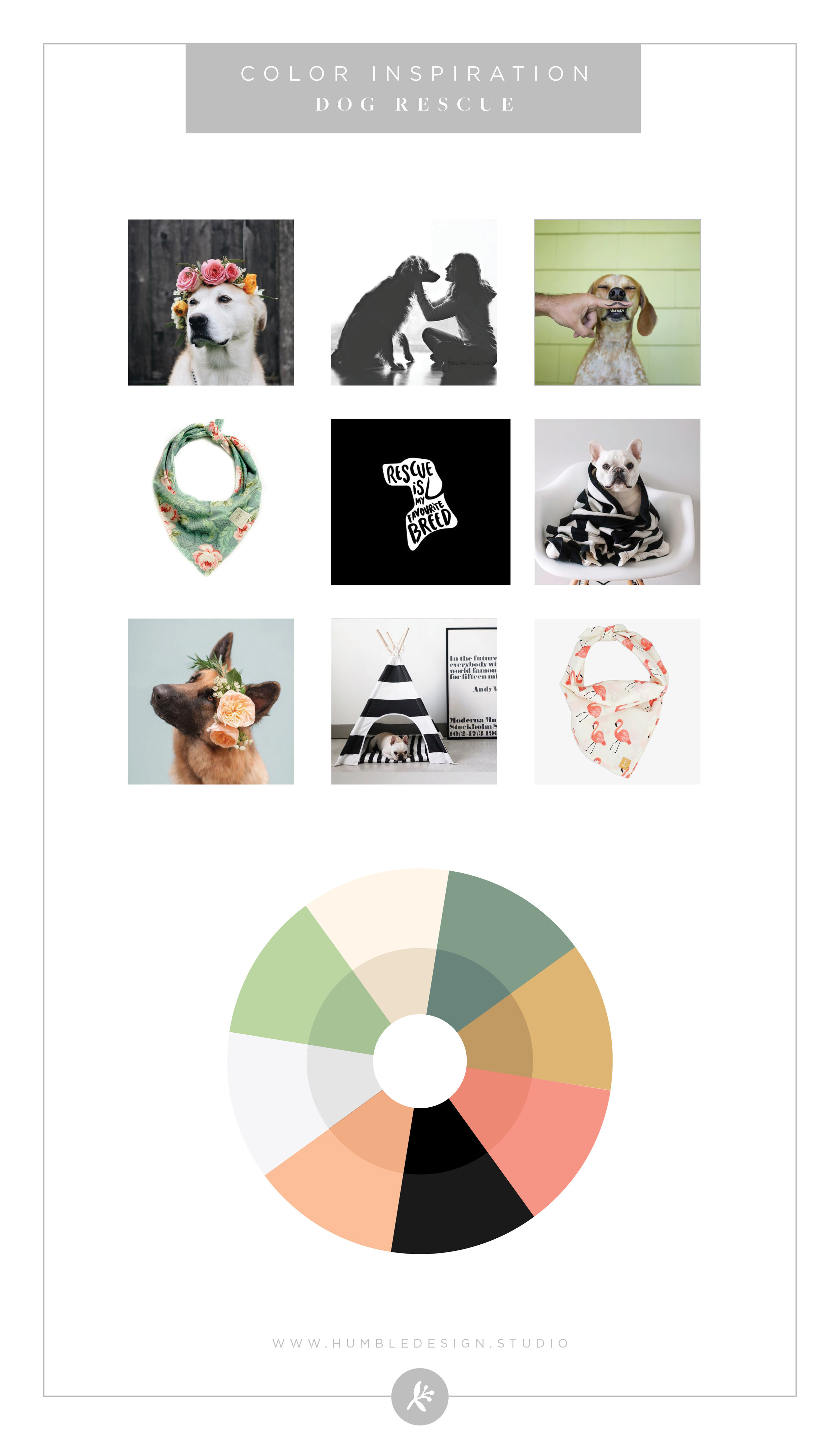 Dog Rescue Color Palette Inspiration