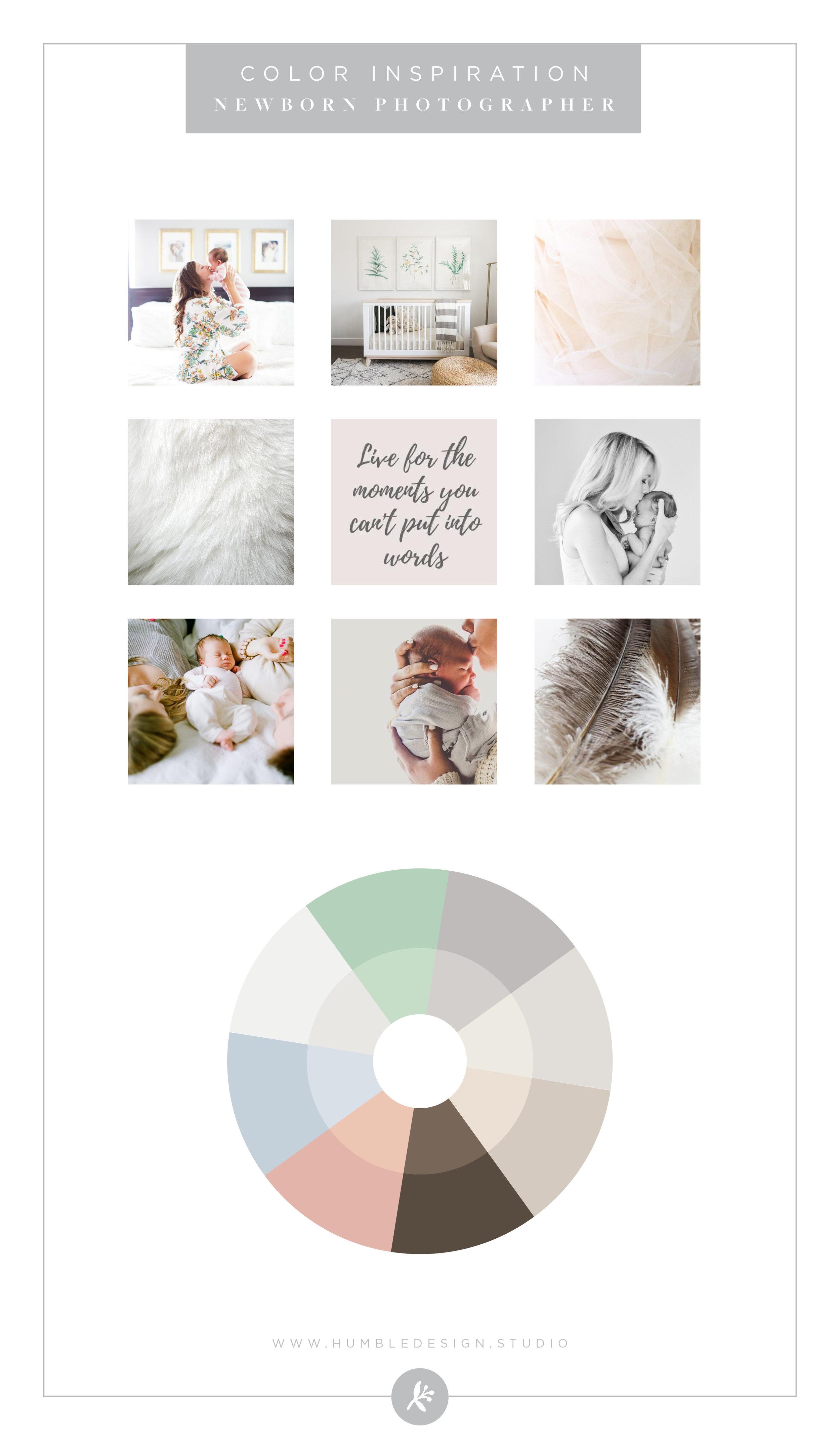 Newborn Photographer - Color Palette Inspiration