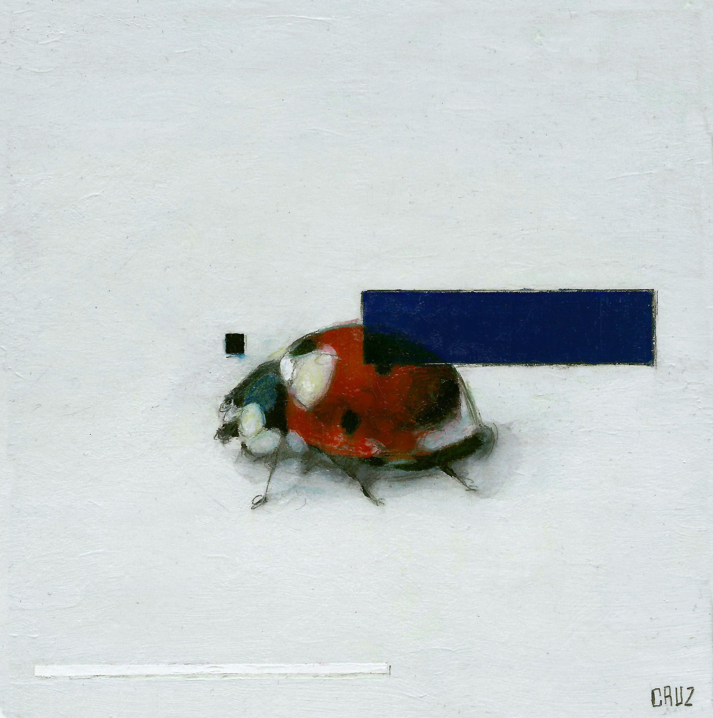 Ladybug with Three Witnesses