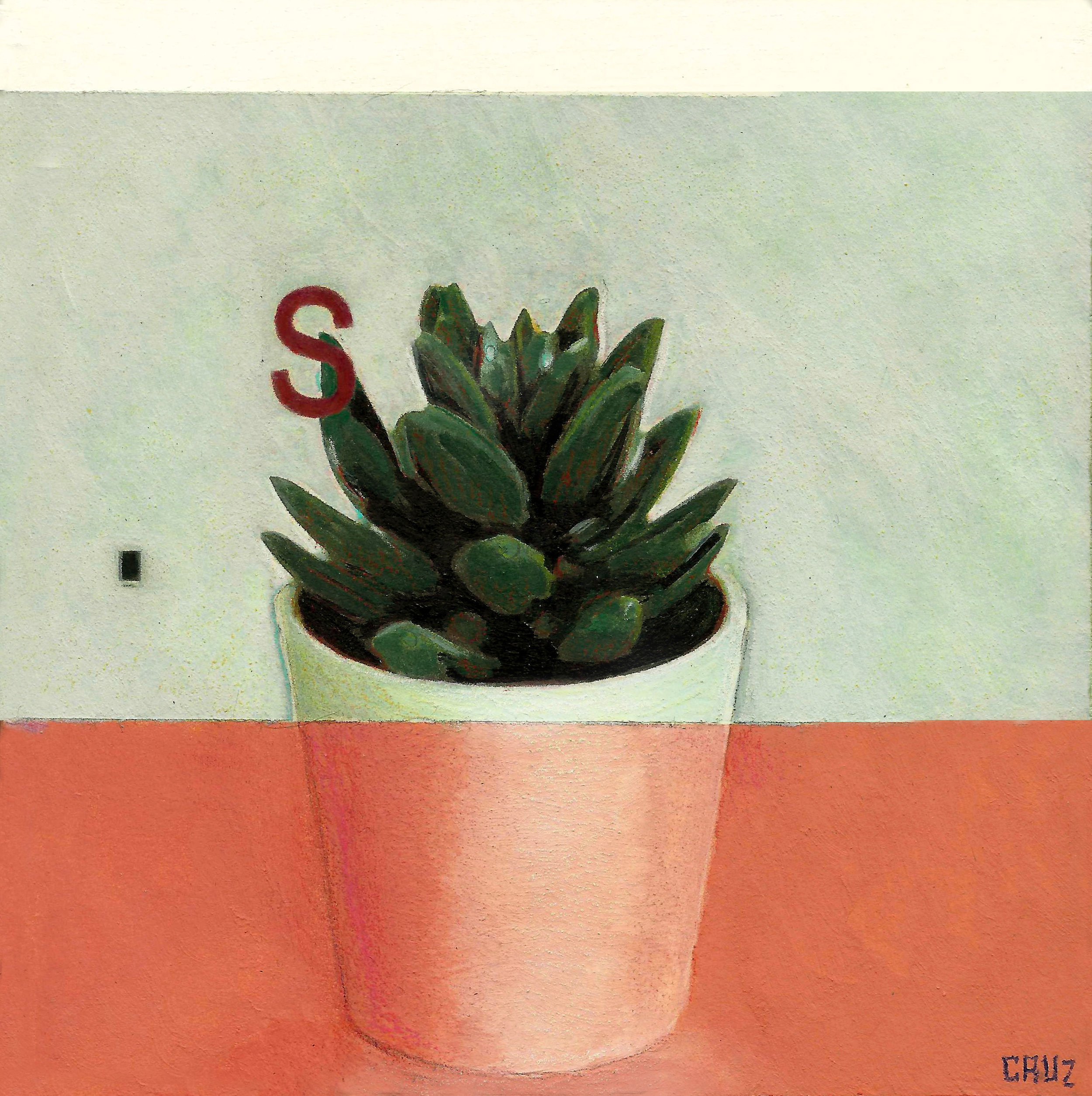 S is for Succulent
