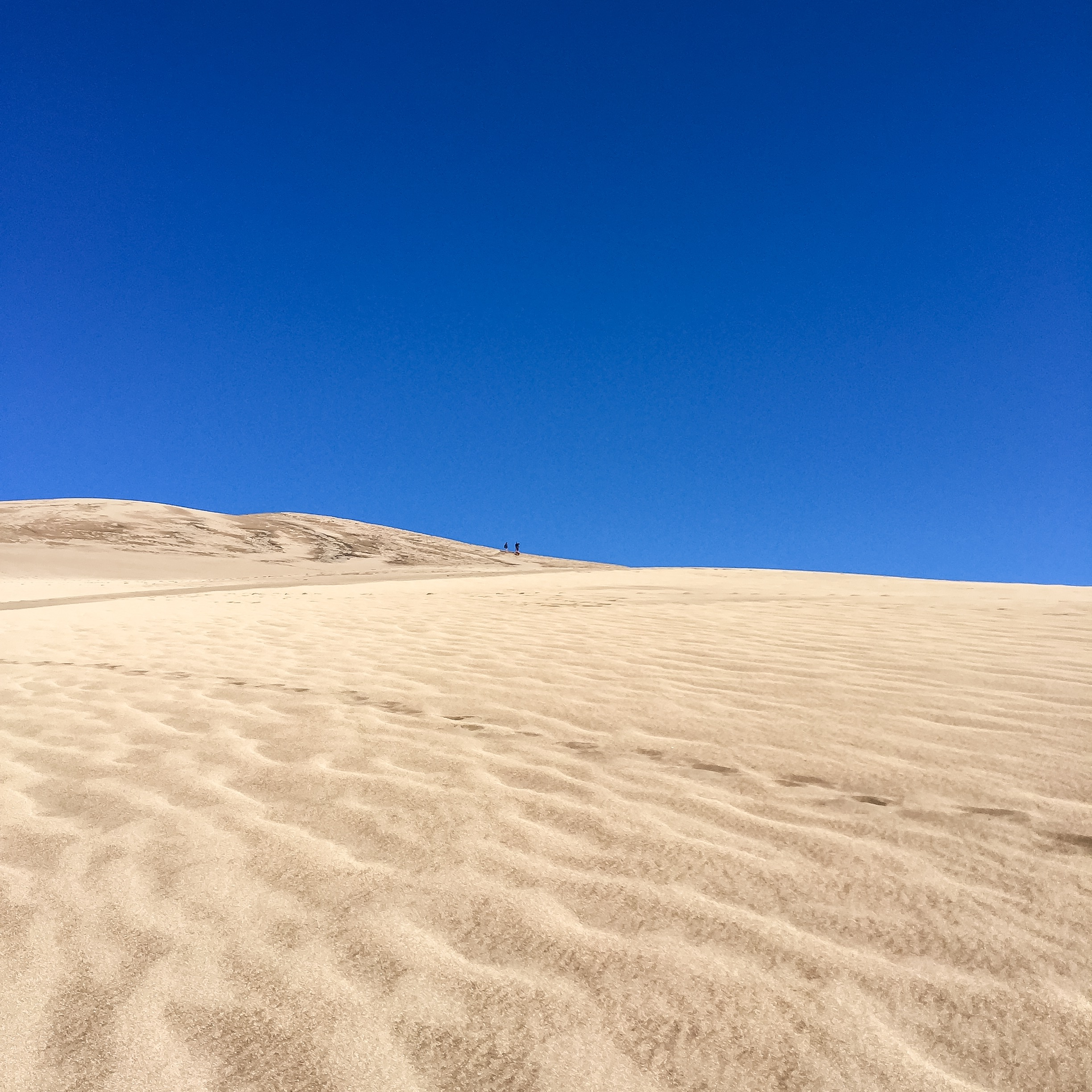 The Great Sand Dunes | Colorado