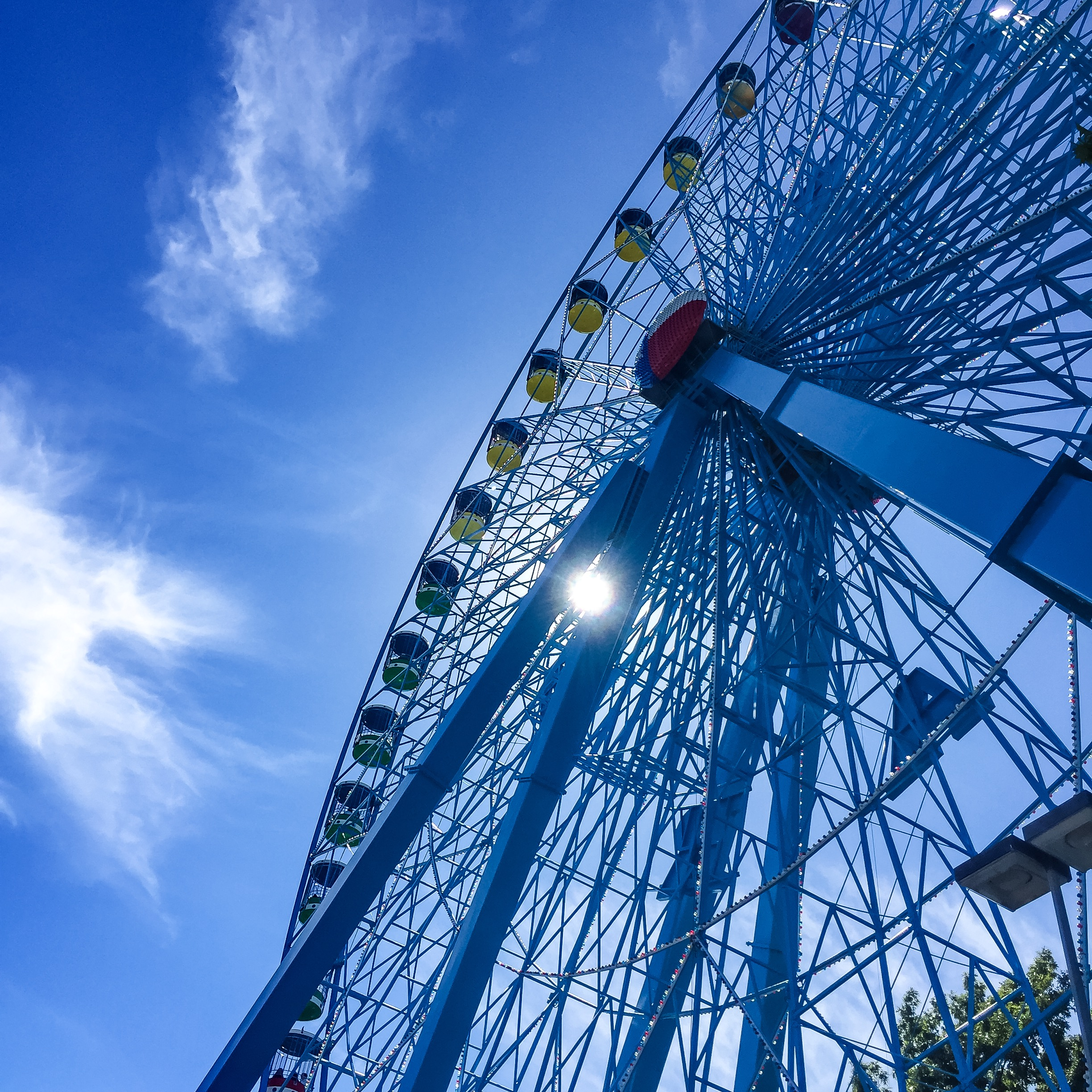 You spin me right round | Texas State Fair
