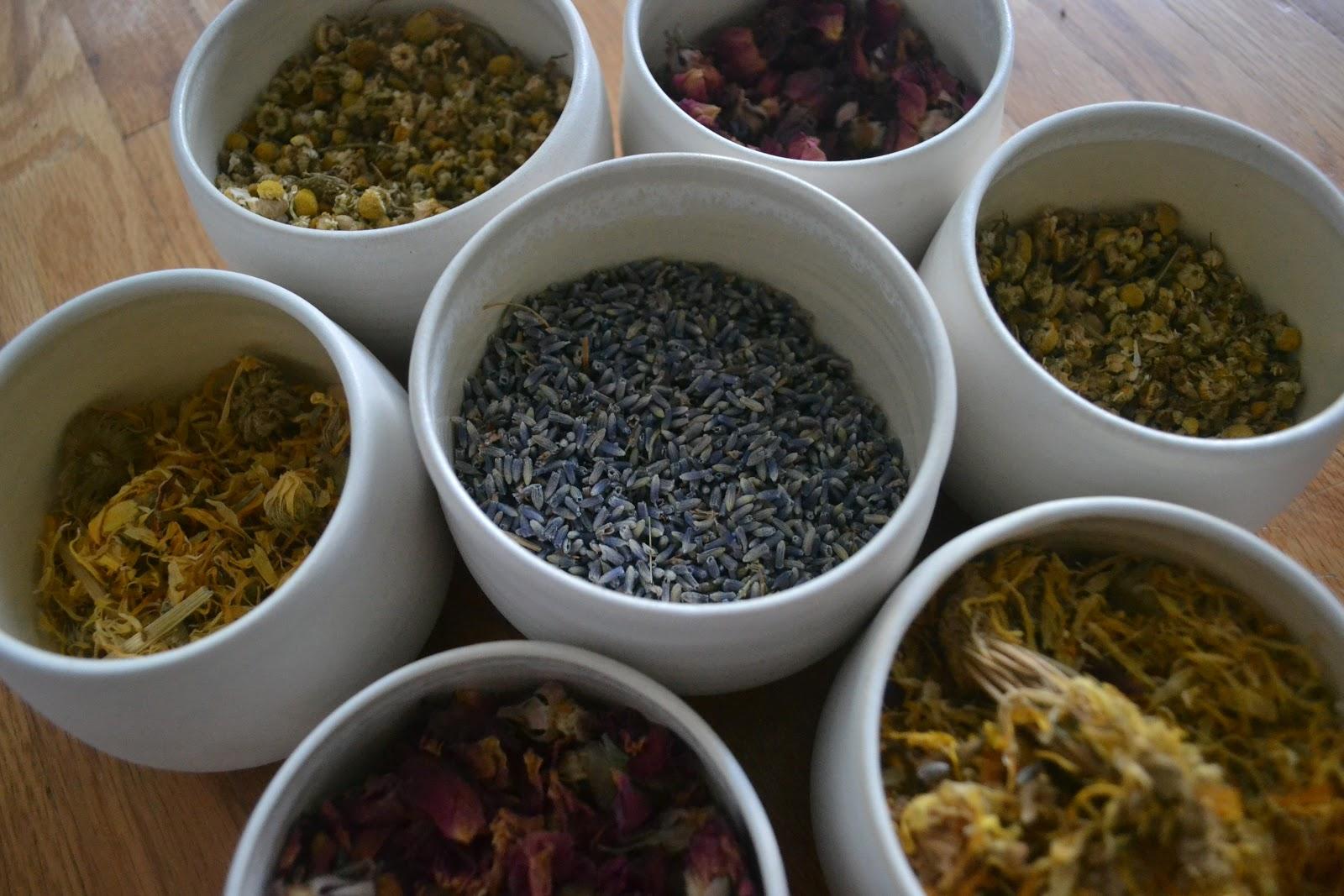 medicinal-herbs-ws.JPG