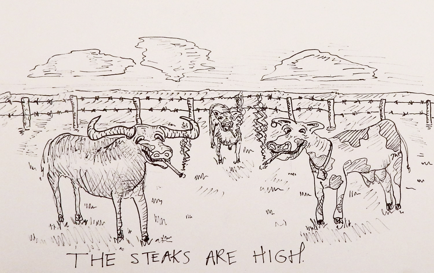 The Steaks are High