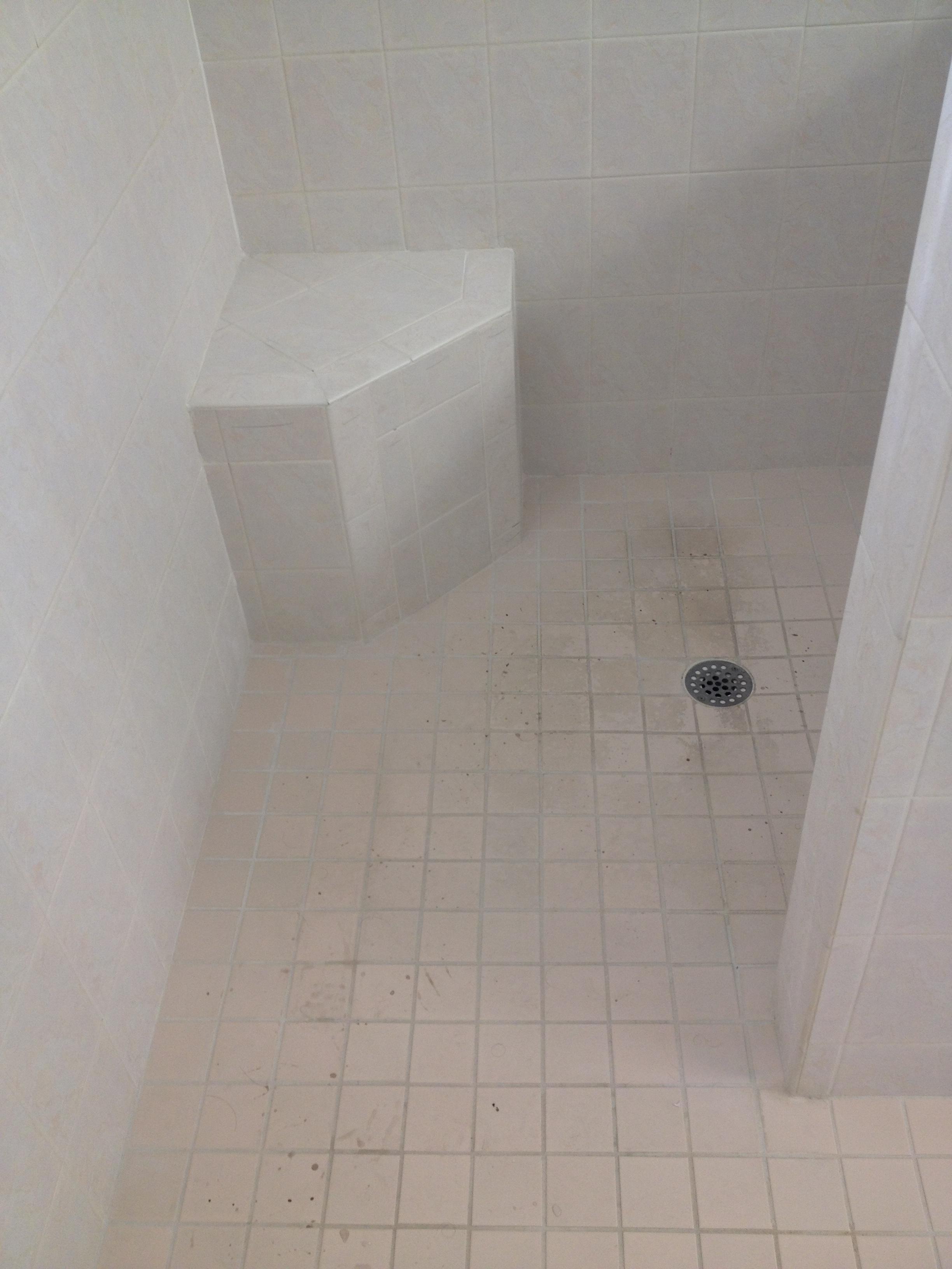 Dirty Tiles in Showers Isn't Fun