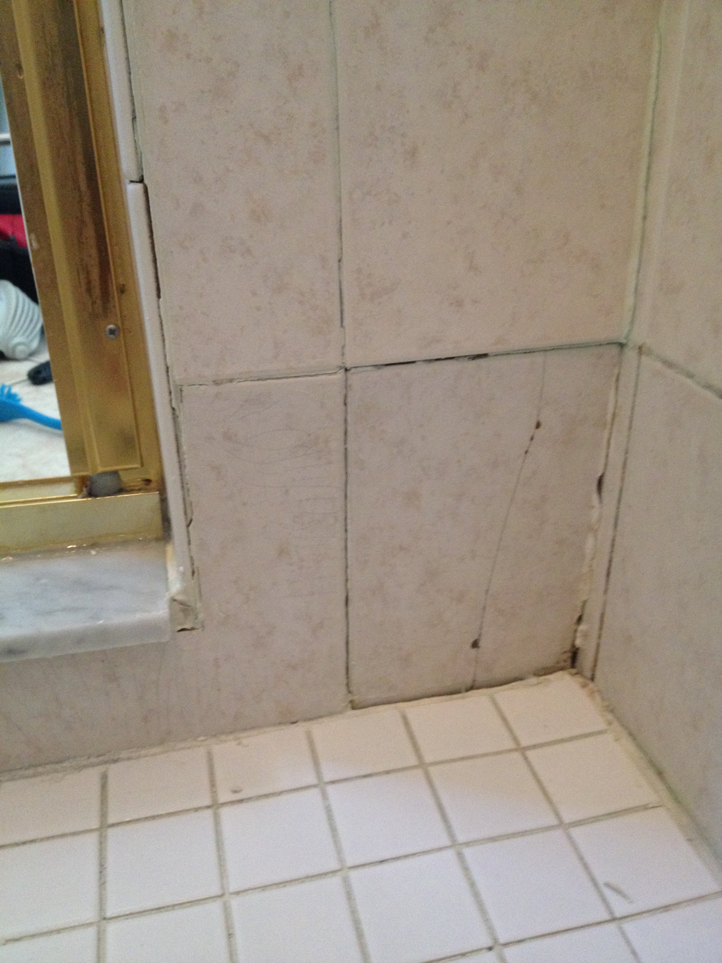 Poorly Maintained Tile and Grout