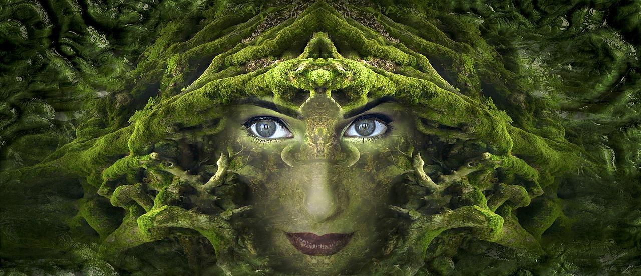 Artist: Kellepics on pixabay.com