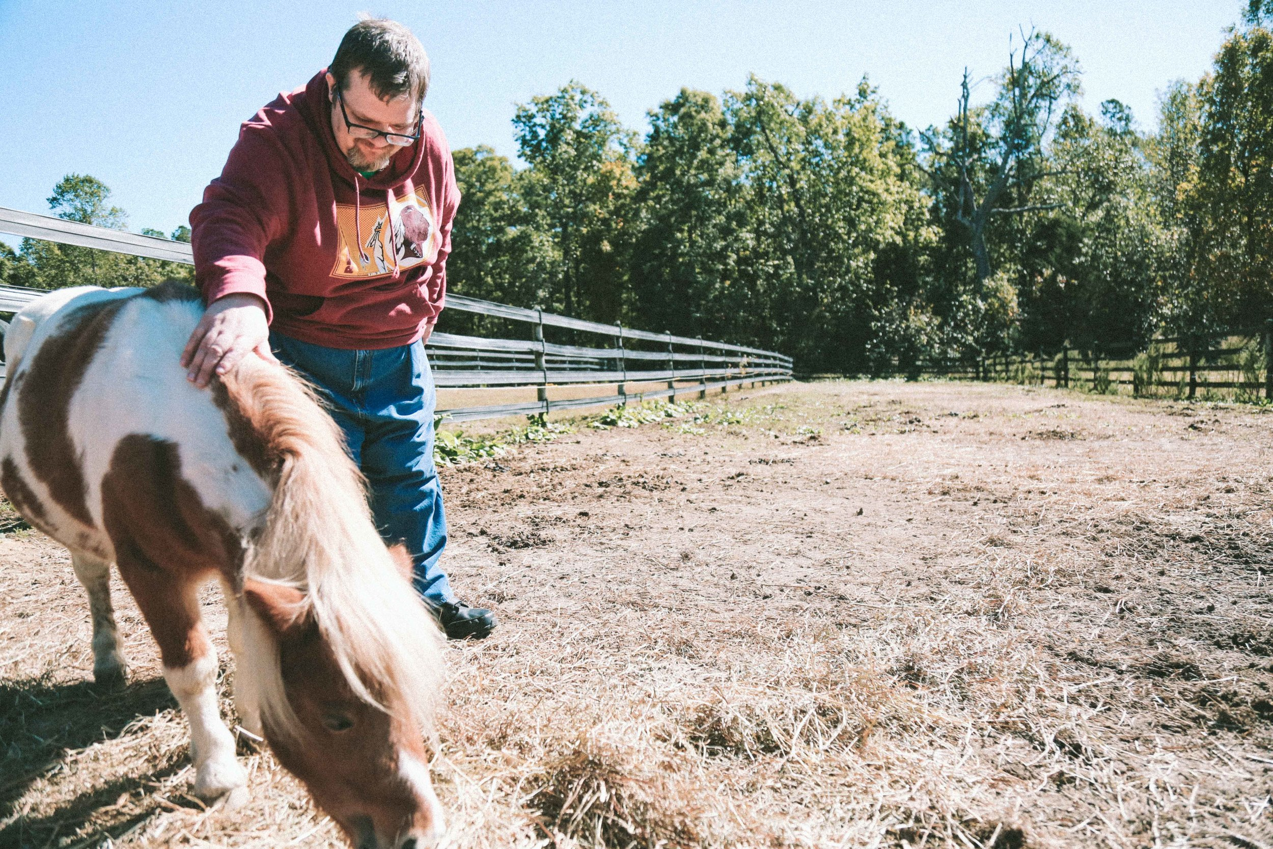 equine therapy-1.jpg