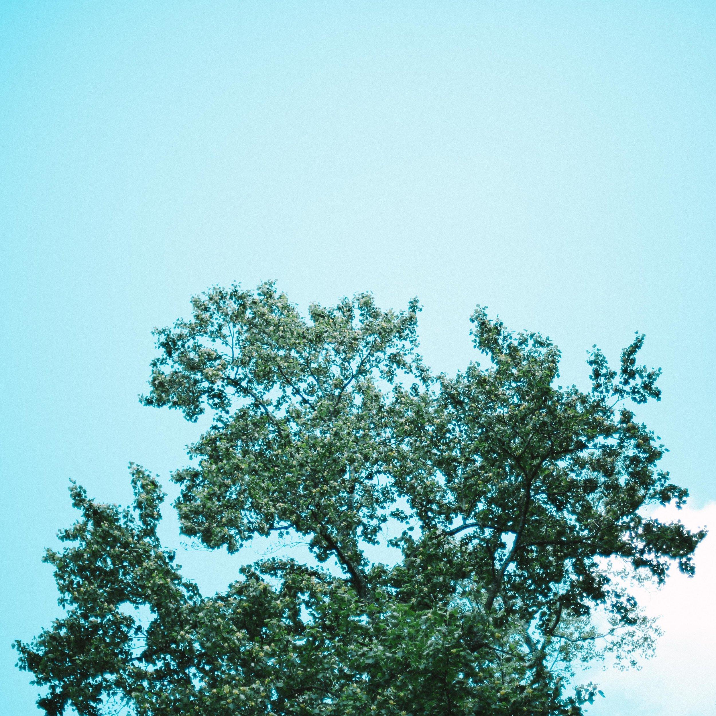 mindfulness images-12.jpg