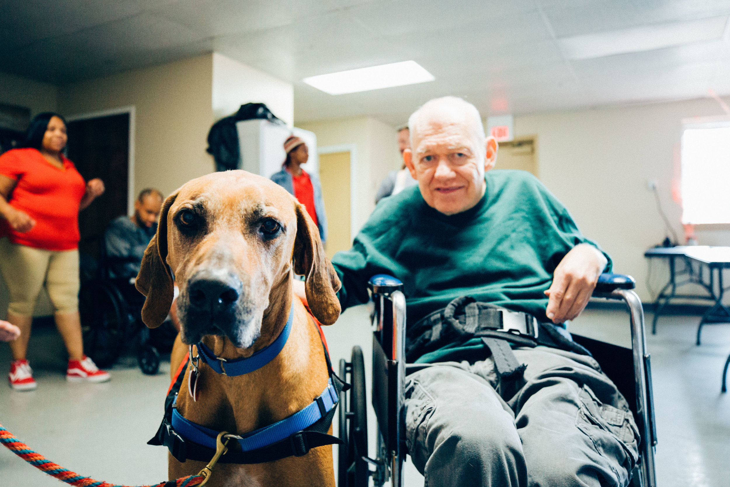 Gus therapy dog-6.jpg