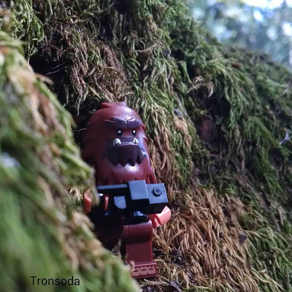 Bigfoot Explores