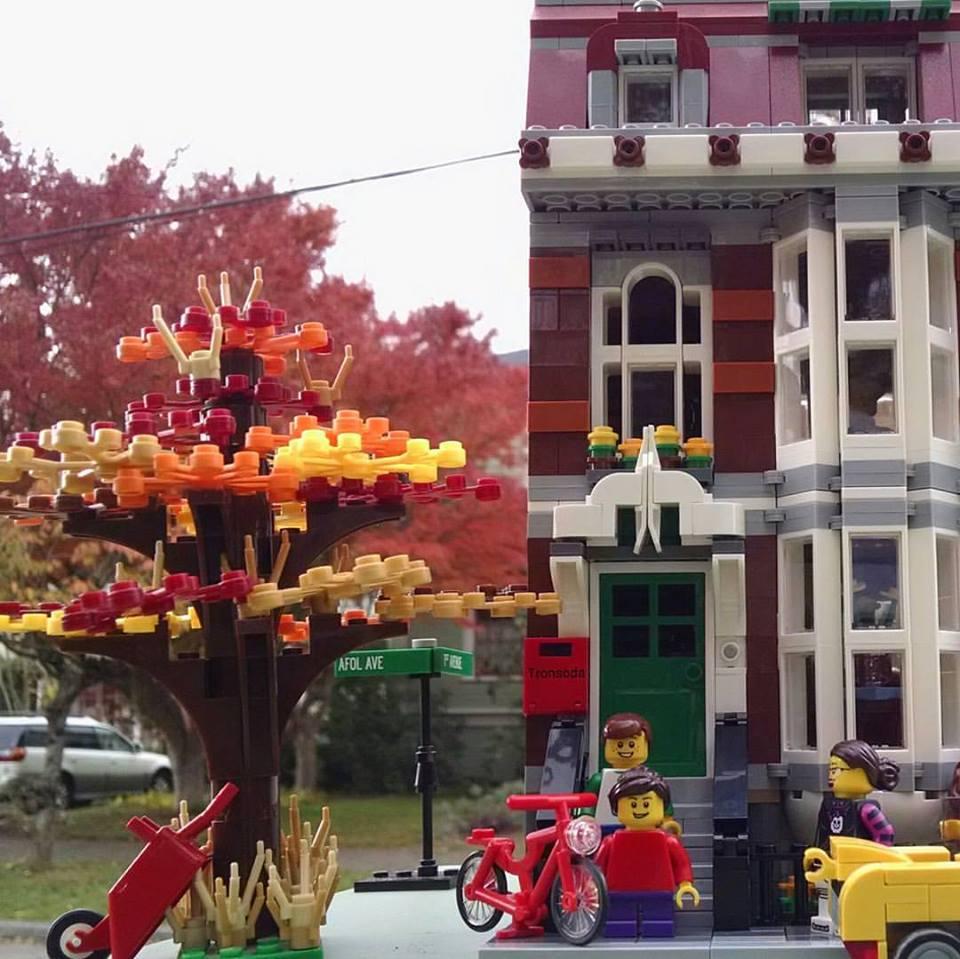 Fall Neighborhood