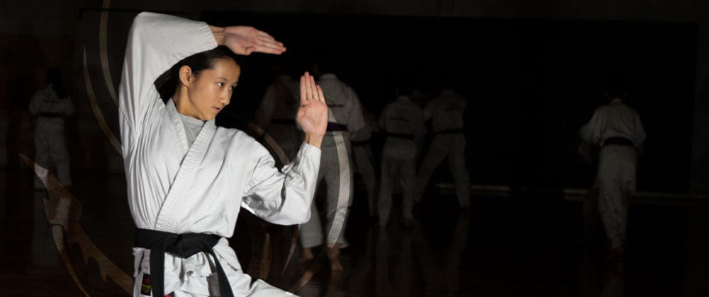 Student practising forms at Mind Over Matter Karate in North York, Toronto.