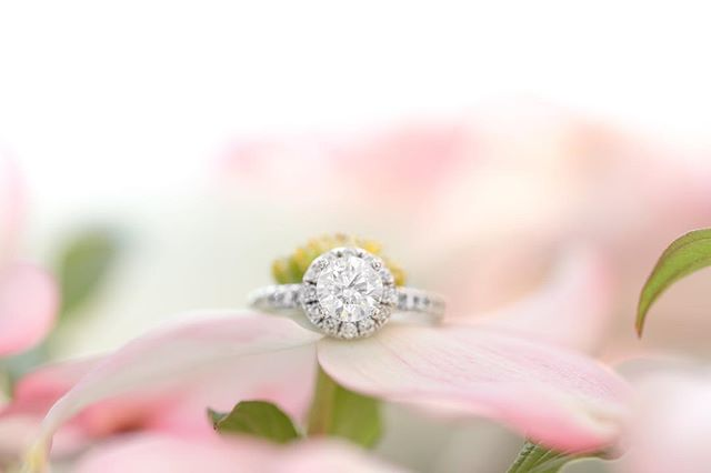 Happy Sunday, friends! 🌸 How gorgeous is Jami's ring?! In loooove with it!