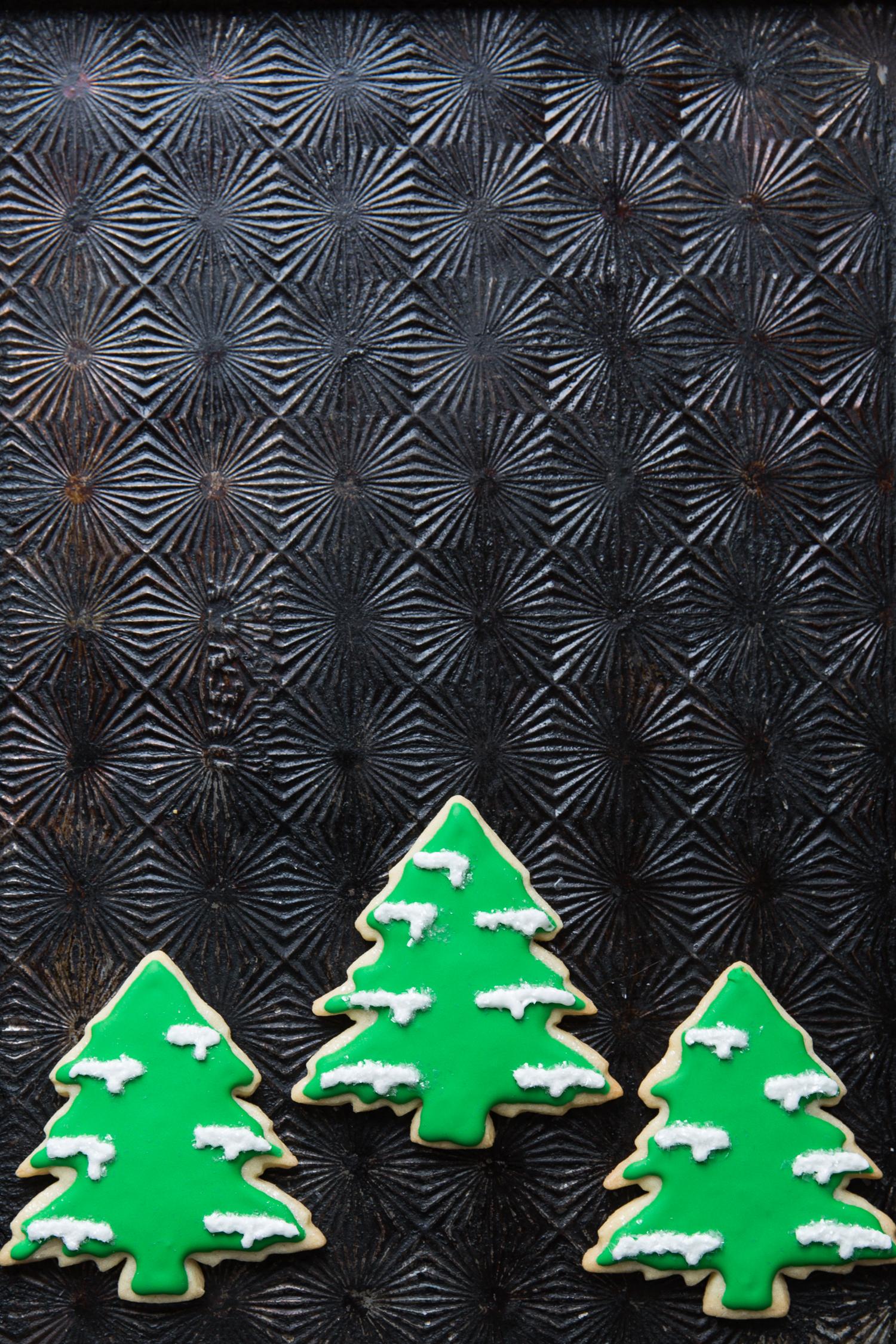 erinscottphotography_holidaycookies-43.jpg