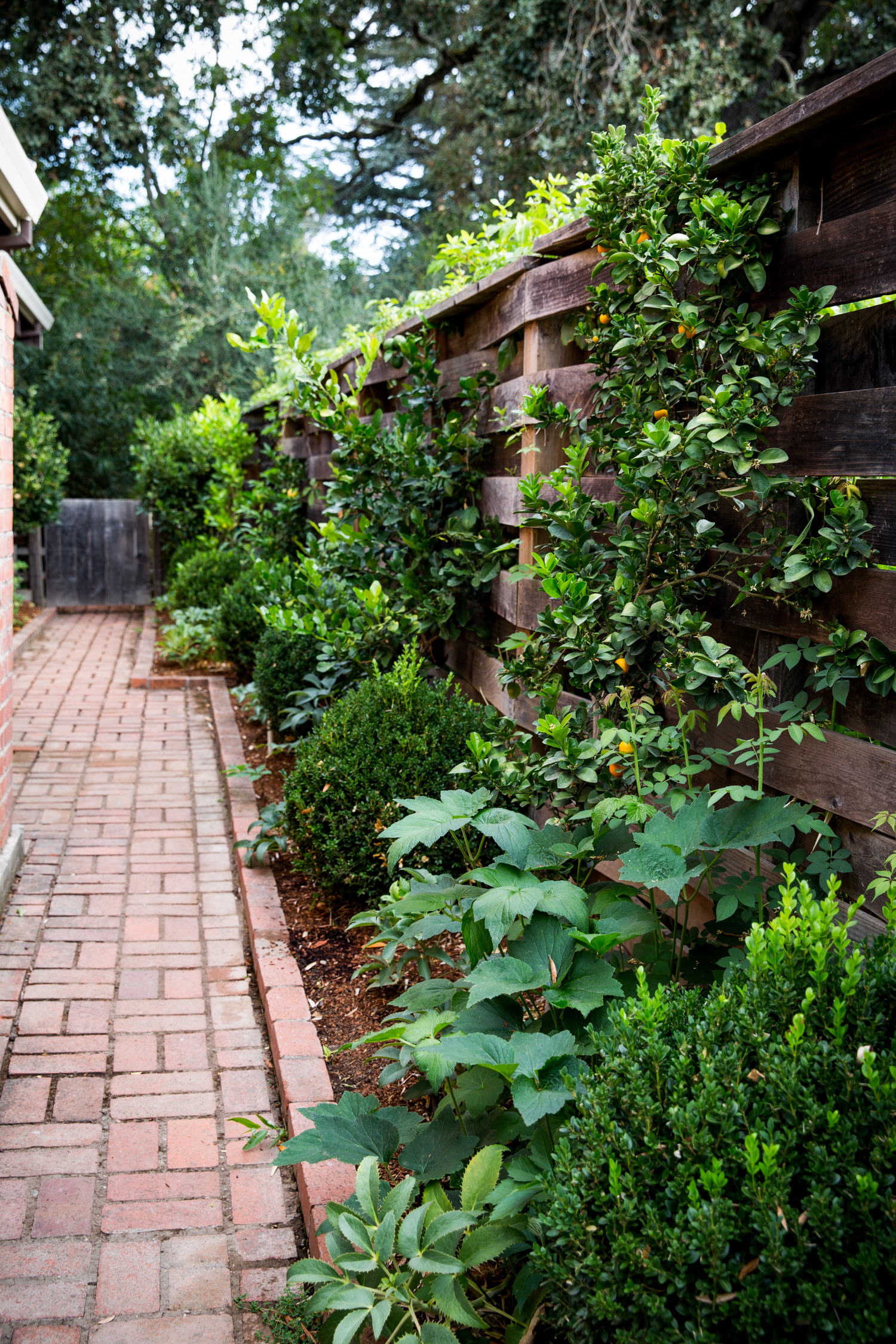 erinscottphotography_homesteaddesigncollective_sonomaproject-22.jpg