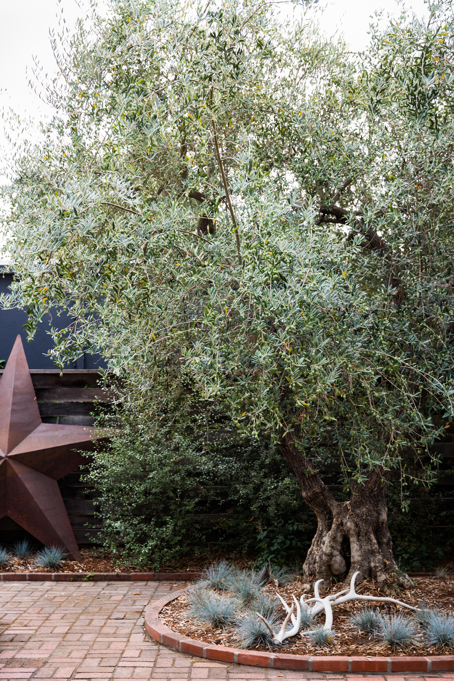 erinscottphotography_homesteaddesigncollective_sonomaproject-20.jpg