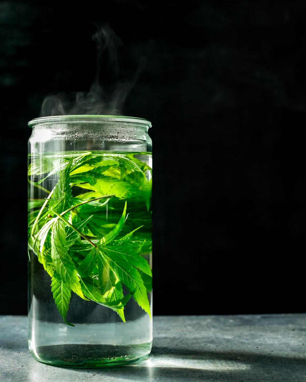 erinscottphotography_122west_cannabisgardener-5975.jpg