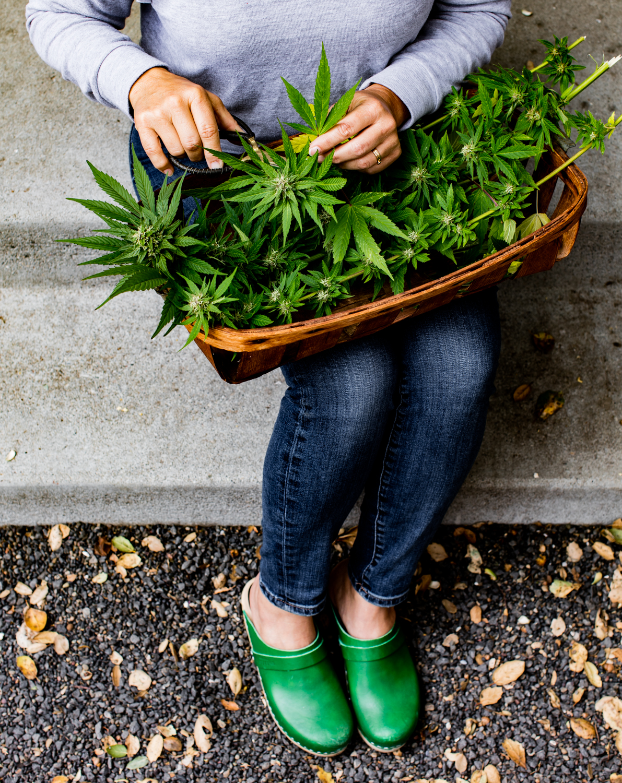erinscottphotography_122west_cannabisgardener-6045.jpg