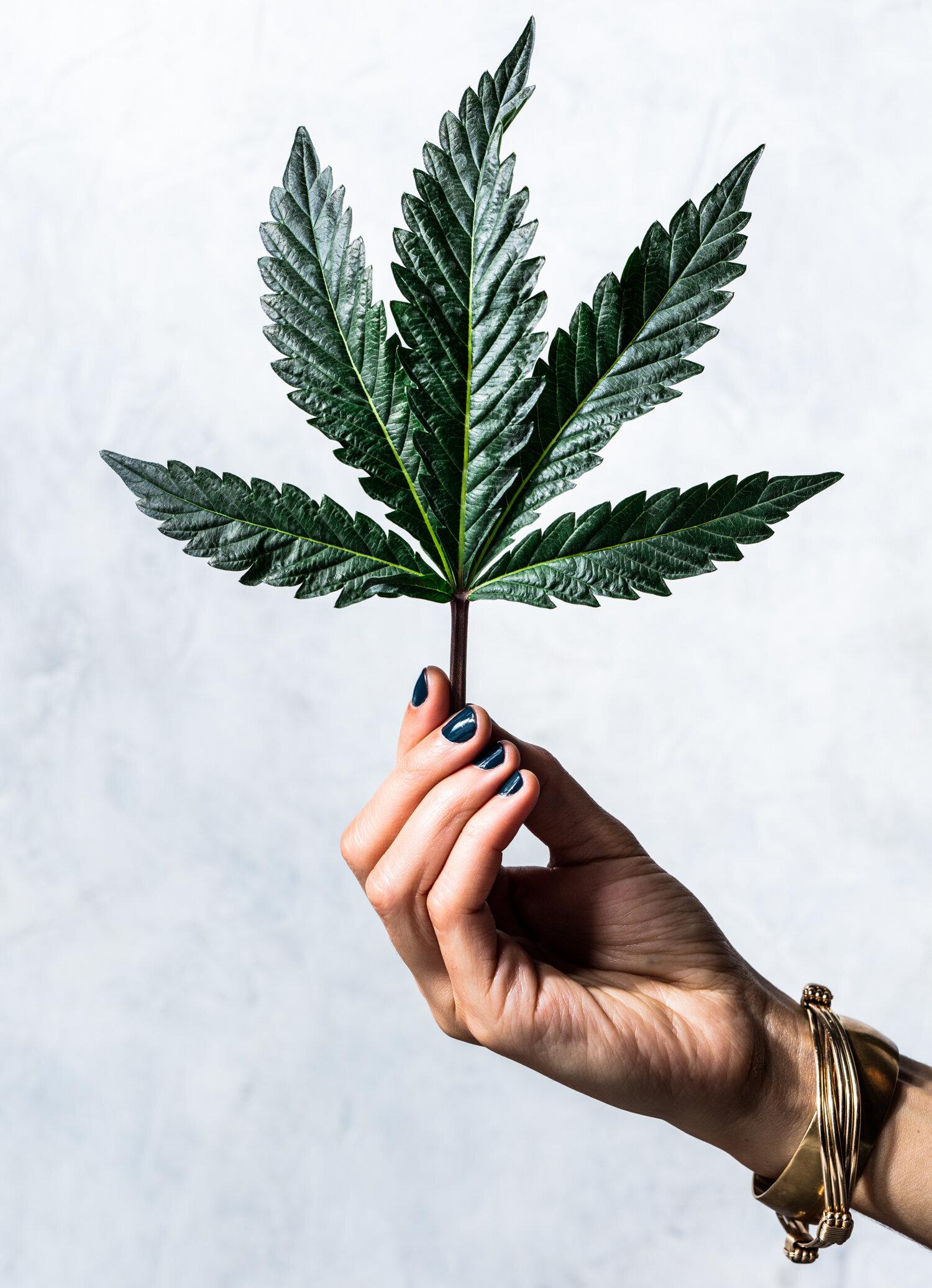 erin-scott-san-francisco-california-cannabis-photographer-ten-speed-press-editorial-9026.jpg