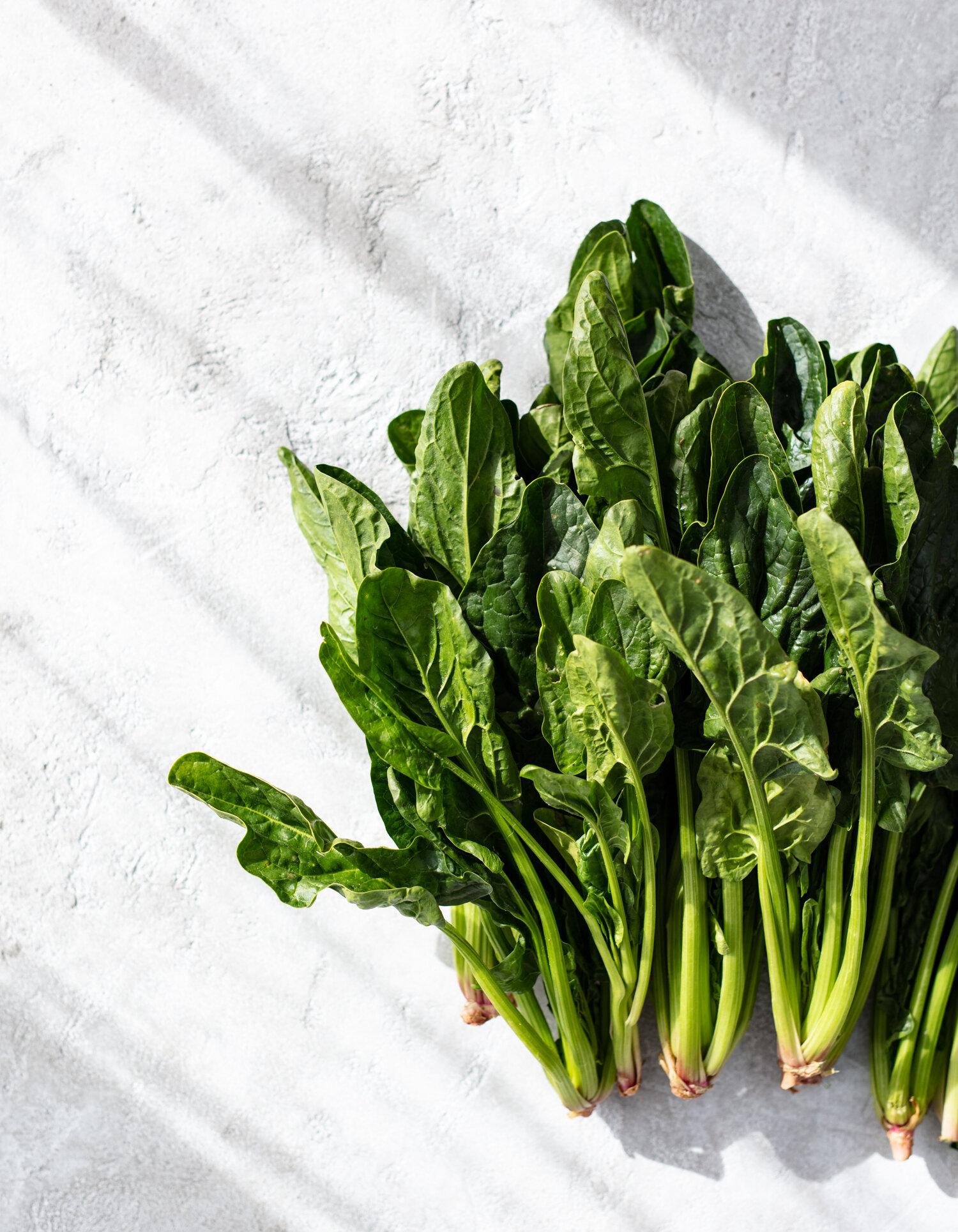 erin-scott-san-francisco-california-food-photographer-bryant-terry_williams-sonoma-catalog-spinach-0166.jpg