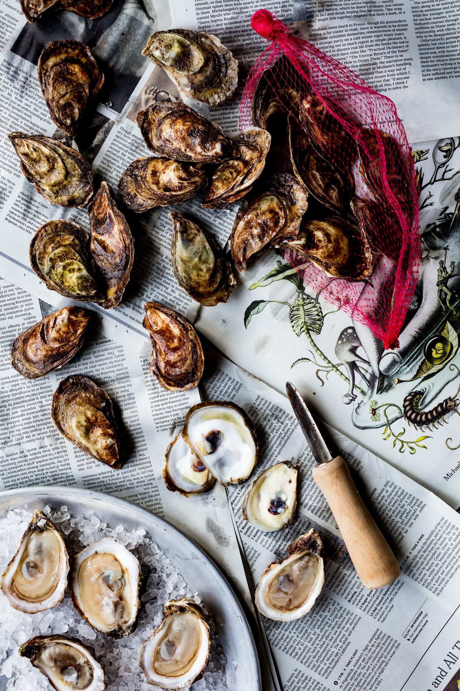 erin-scott-san-francisco-california-natural-light-editorial-food-photographer-edible-communities-shucked-oysters-7574.jpg