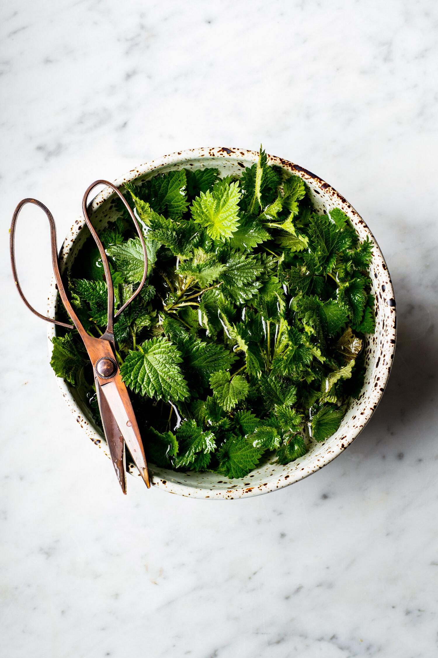 erin-scott-san-francisco-california-natural-light-editorial-food-photographer-edible-communities-garden-nettles-9404.jpg