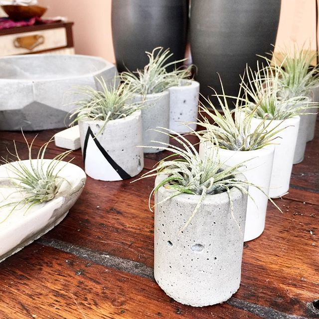 Airplants and concrete mix! . . . . #plants #succulents #airplants #interiordesign #plantsmakepeoplehappy #plantclub #concrete #concreteplanter #nature #jungalow