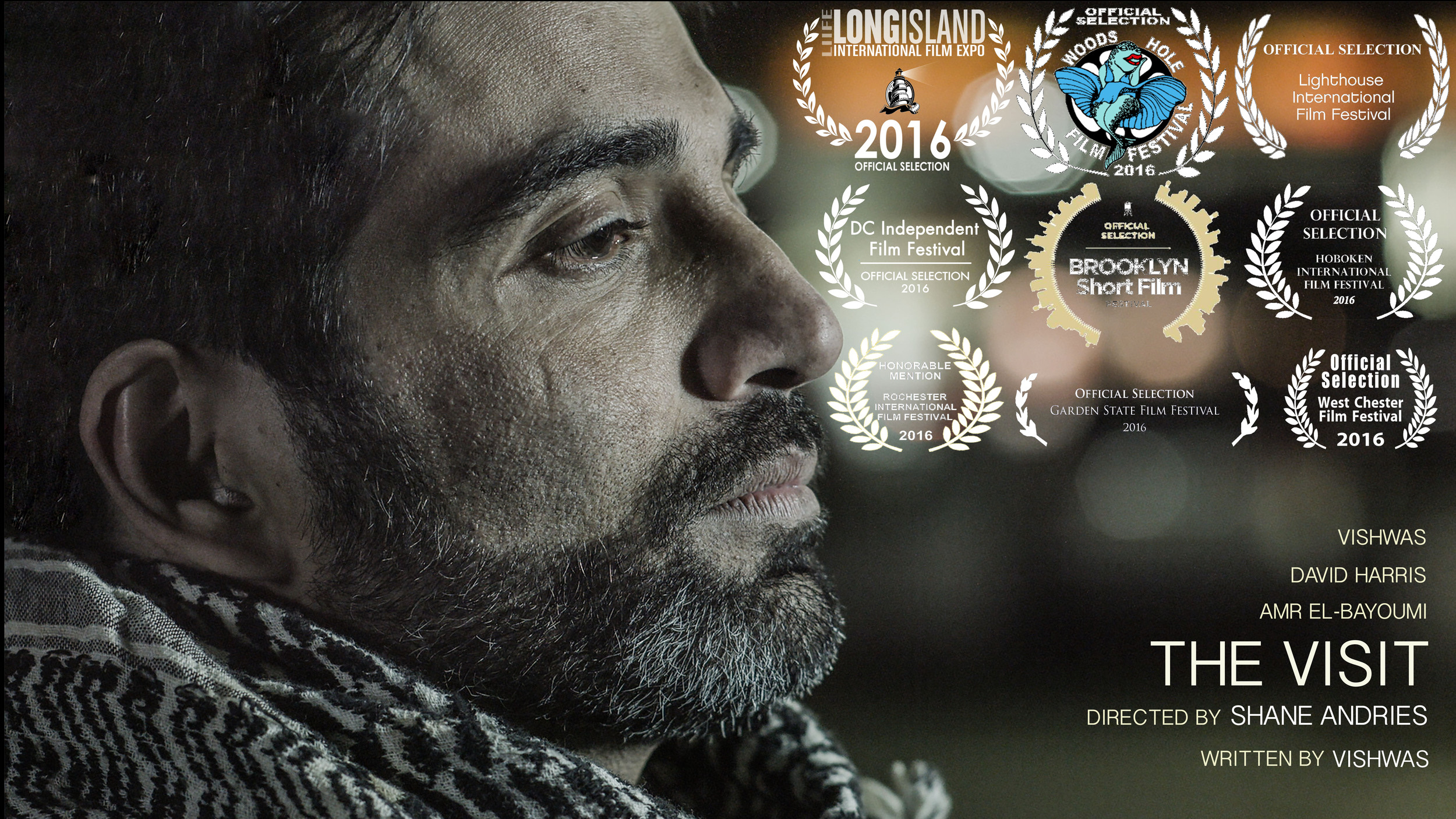 DCIFF_Laurel_OfficialSelection2016.jpg