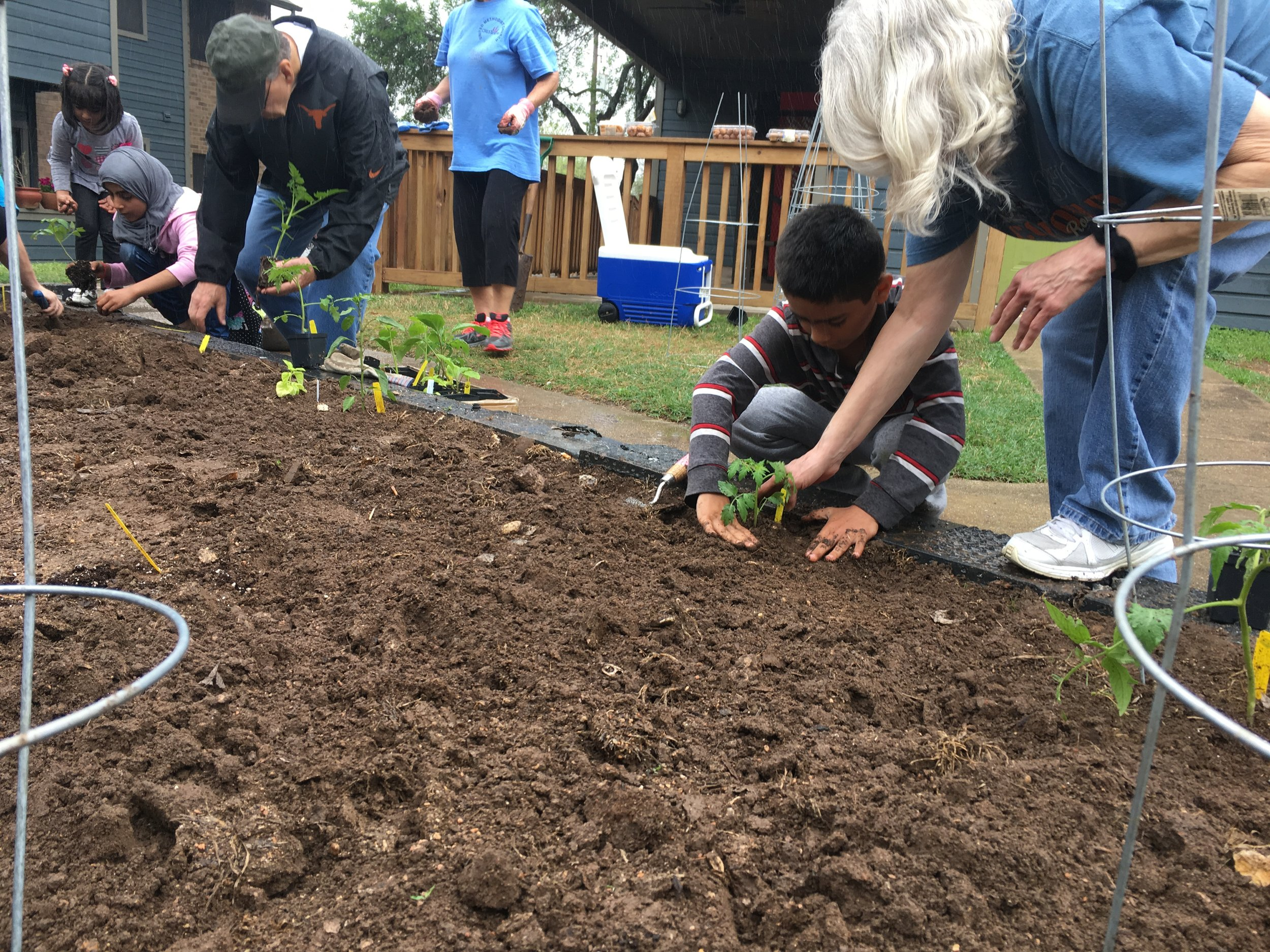 Ref Garden 1.jpg