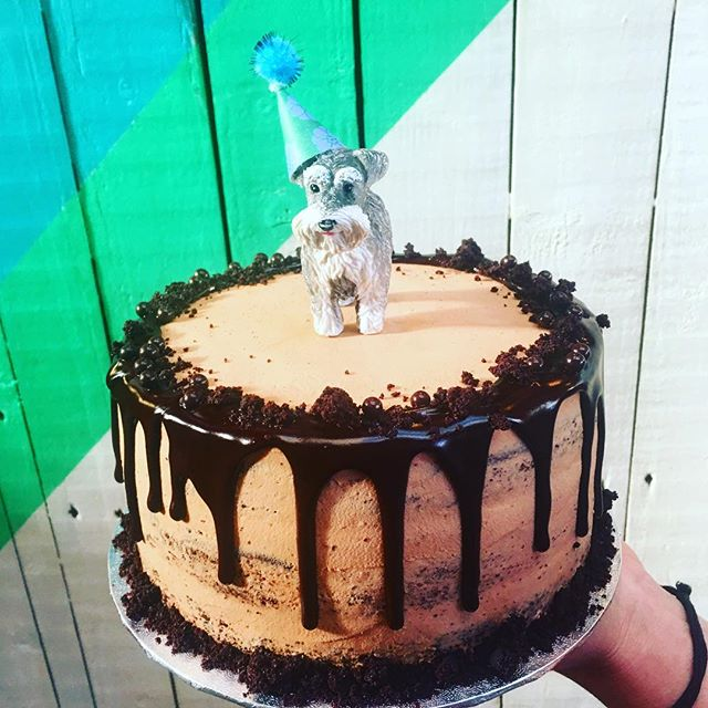 A #happyday is also about #cake & #chocolate & a #yummy #birthdaycake & a #cute #dog #nuvolalittlebakery #alittlebakery @tootingmarket #london • • • #bespoke #birthday #celebration #wedding #cakes #dessert #organic #delicious #instacake #instagood #cakesofinstagram #animal #caketopper