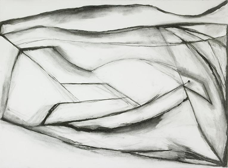 "Frozen Bird , charcoal on paper, 22"" x 30"", 2010"