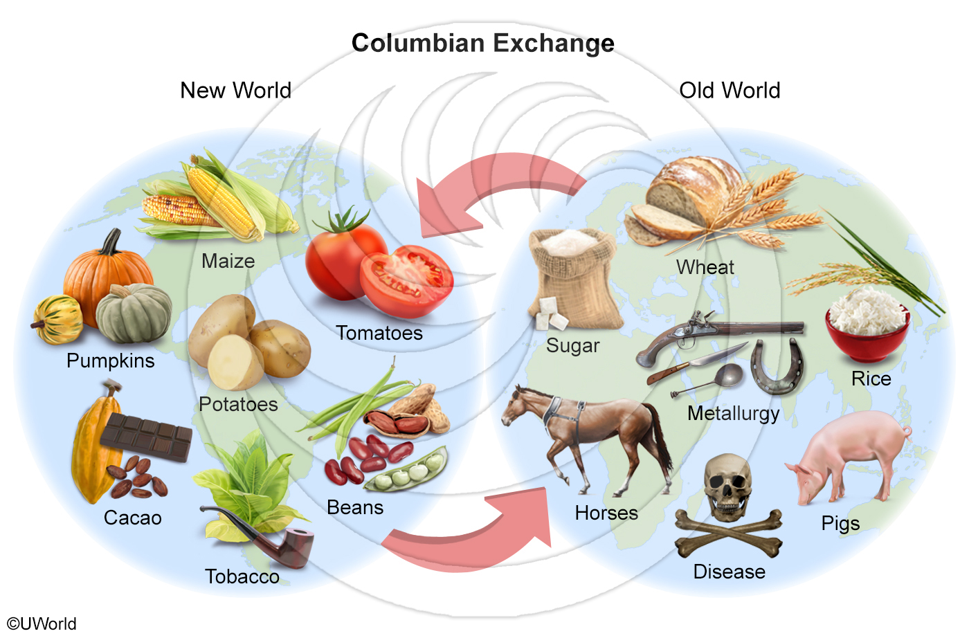 New-Columbian-Exchange-Clickable.jpg
