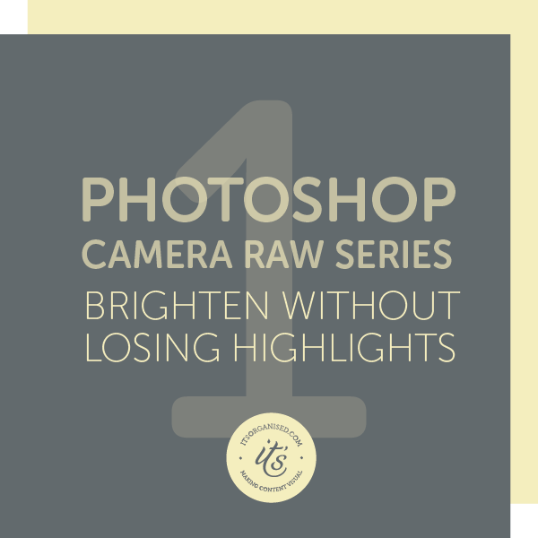 The Camera Raw Filter in Photoshop is a great, non-destructive tool for fast photo editing. Don't let the name put you off - it's perfect for beginners! Try this 5-part series to see what it can do for your photos. itsorganised.com | video tutorials
