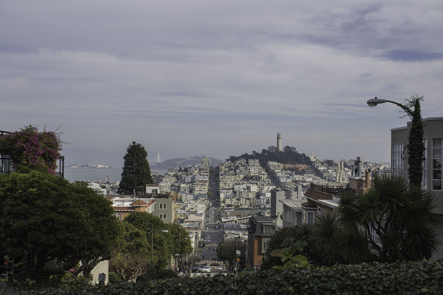SanFrancisco_CA_RussianHill_005.jpg