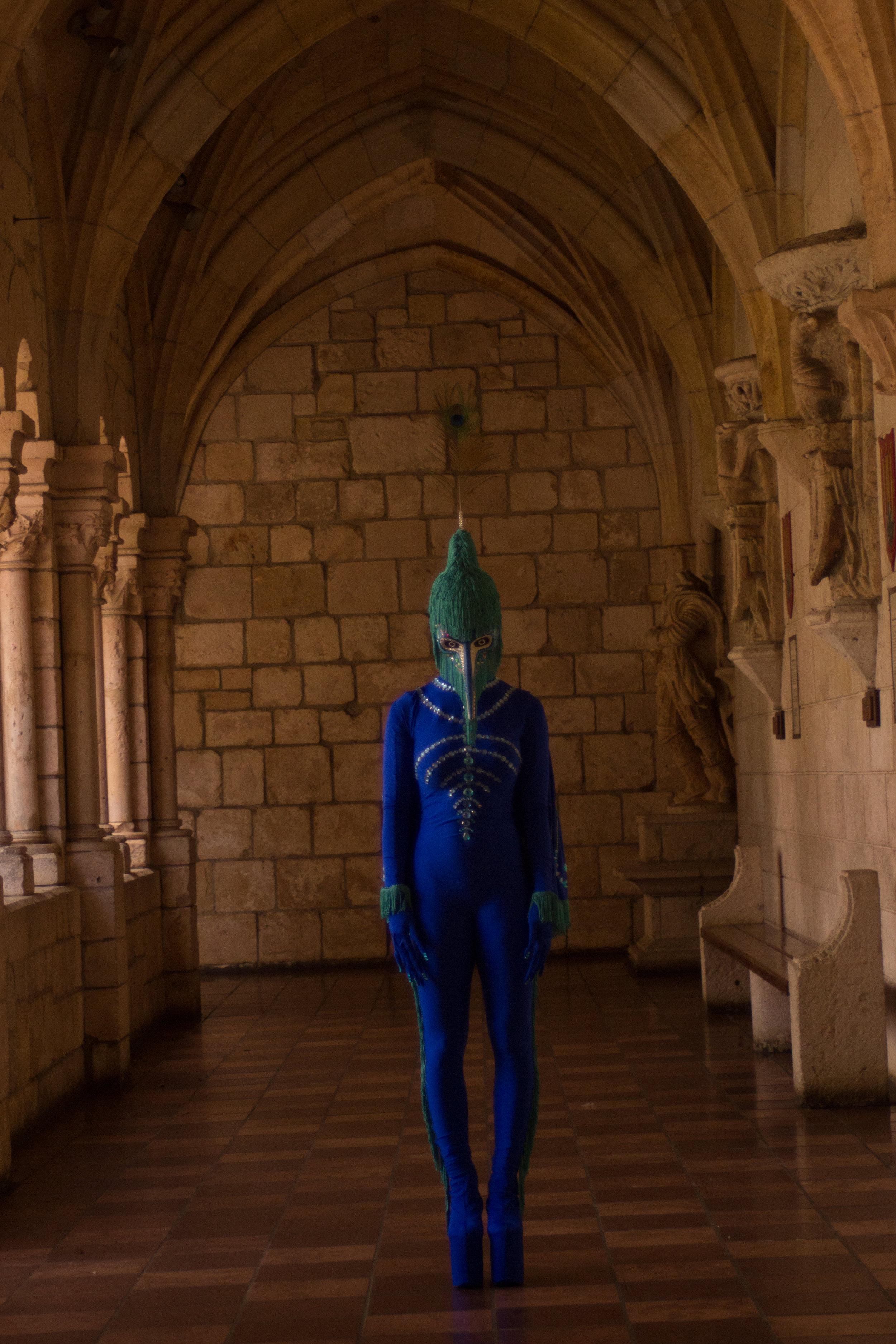 Peacock fairytale-8925.jpg