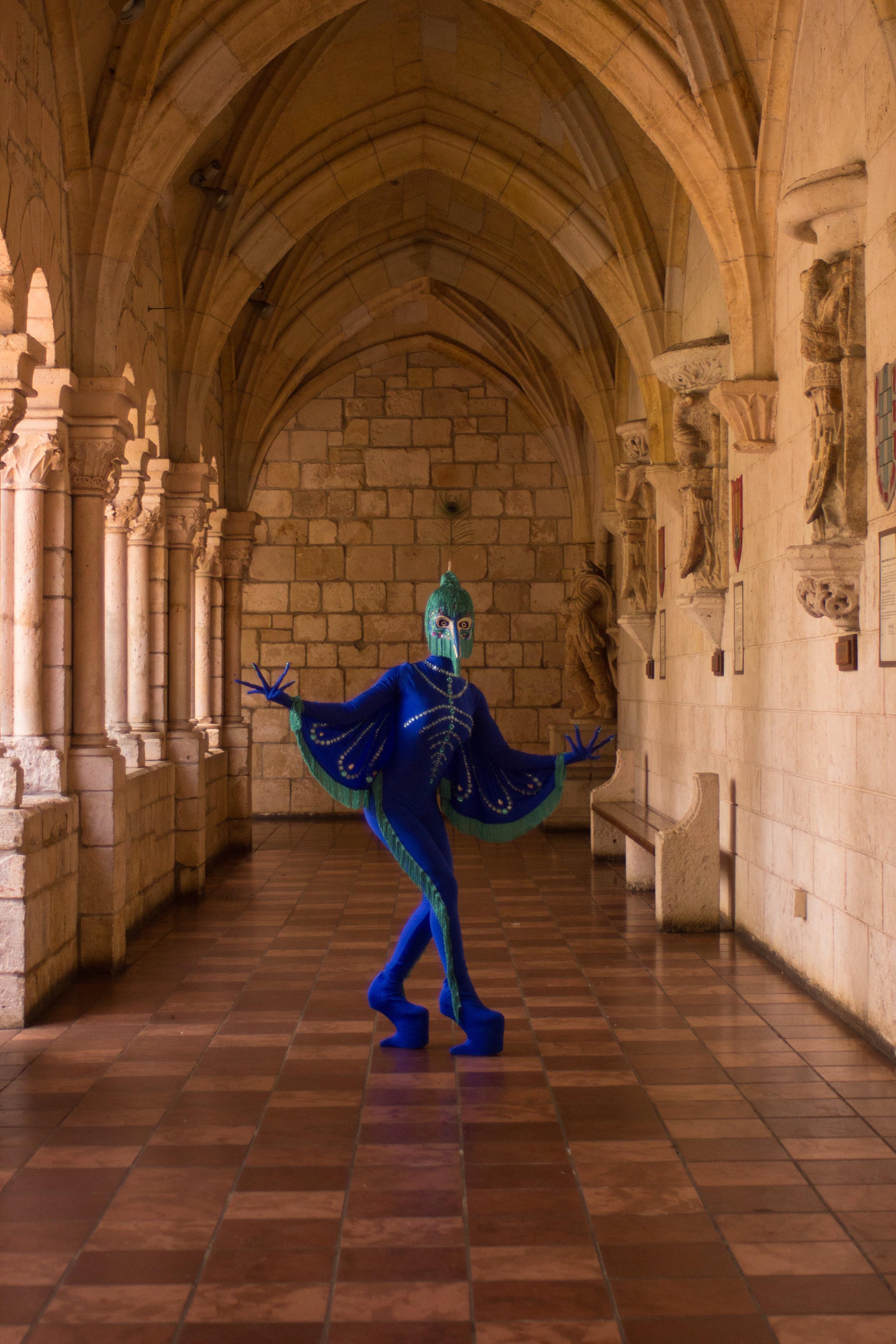 Peacock fairytale-8923.jpg