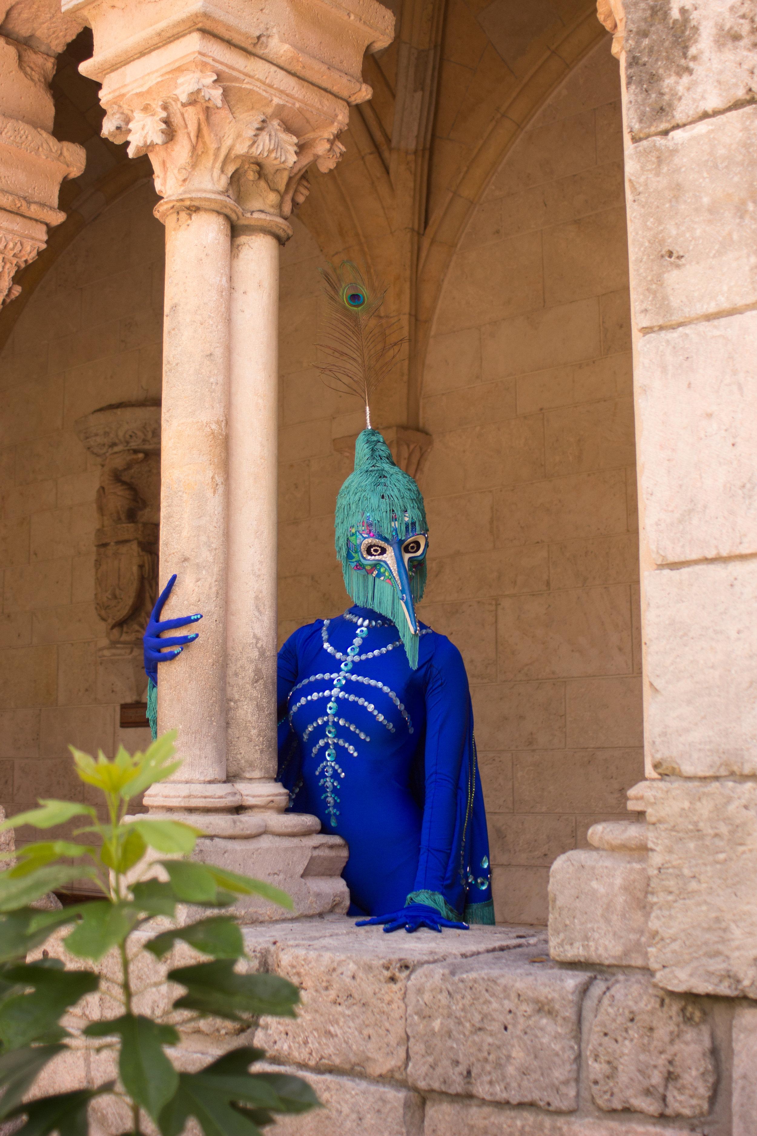 Peacock fairytale-8959.jpg