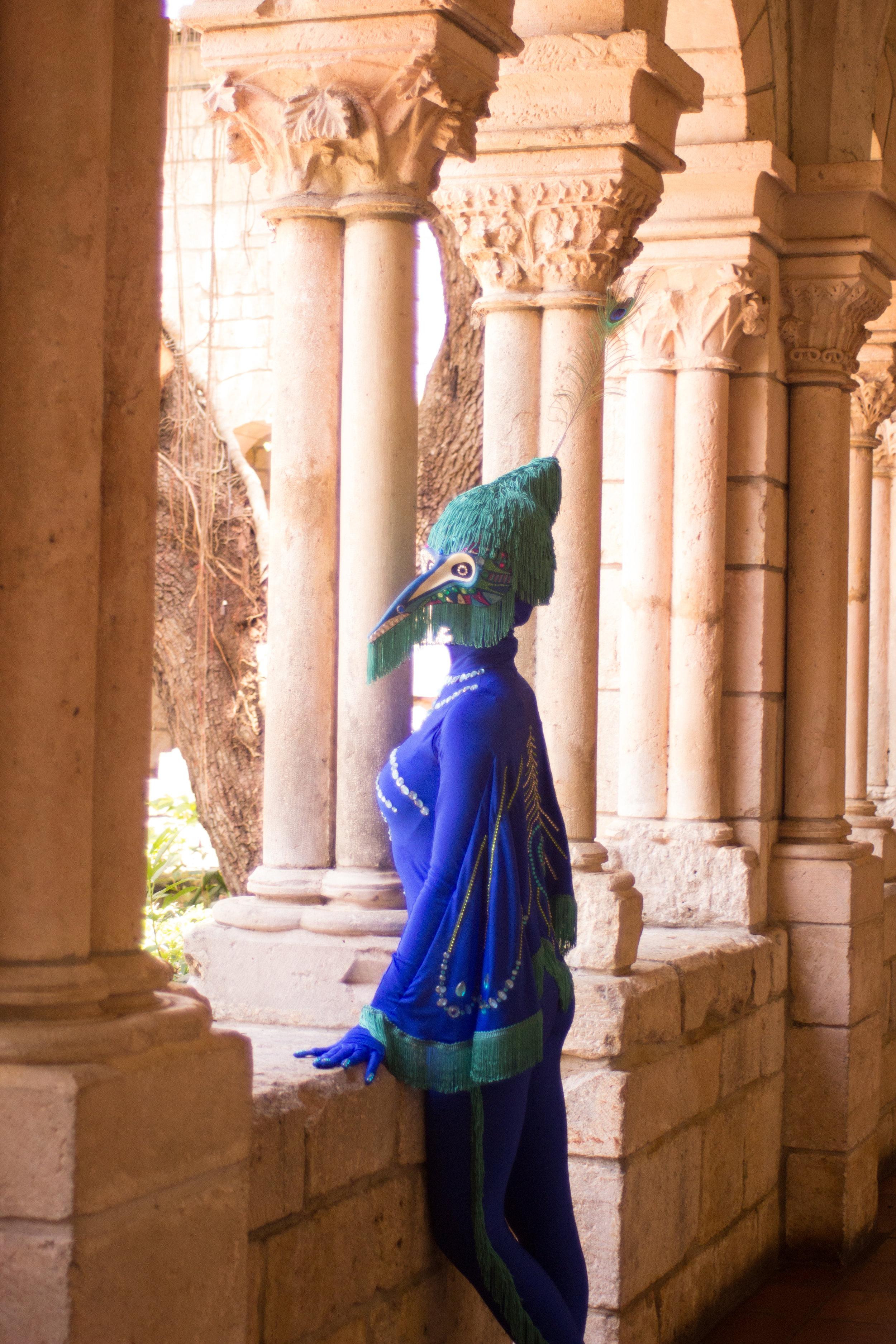 Peacock fairytale-8943.jpg