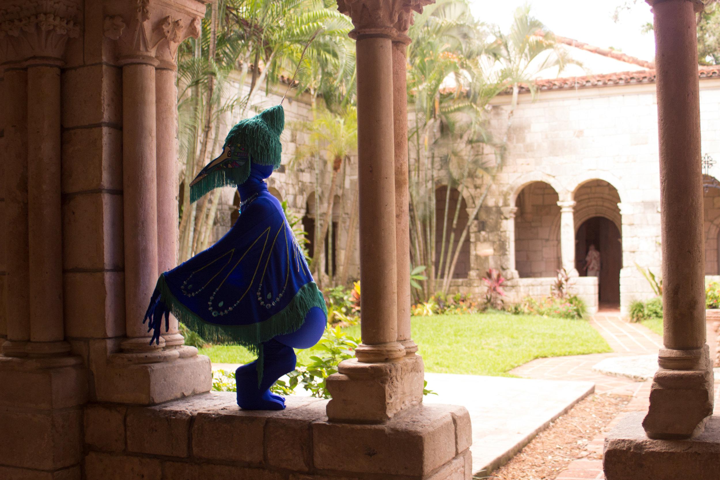 Peacock fairytale-8974.jpg