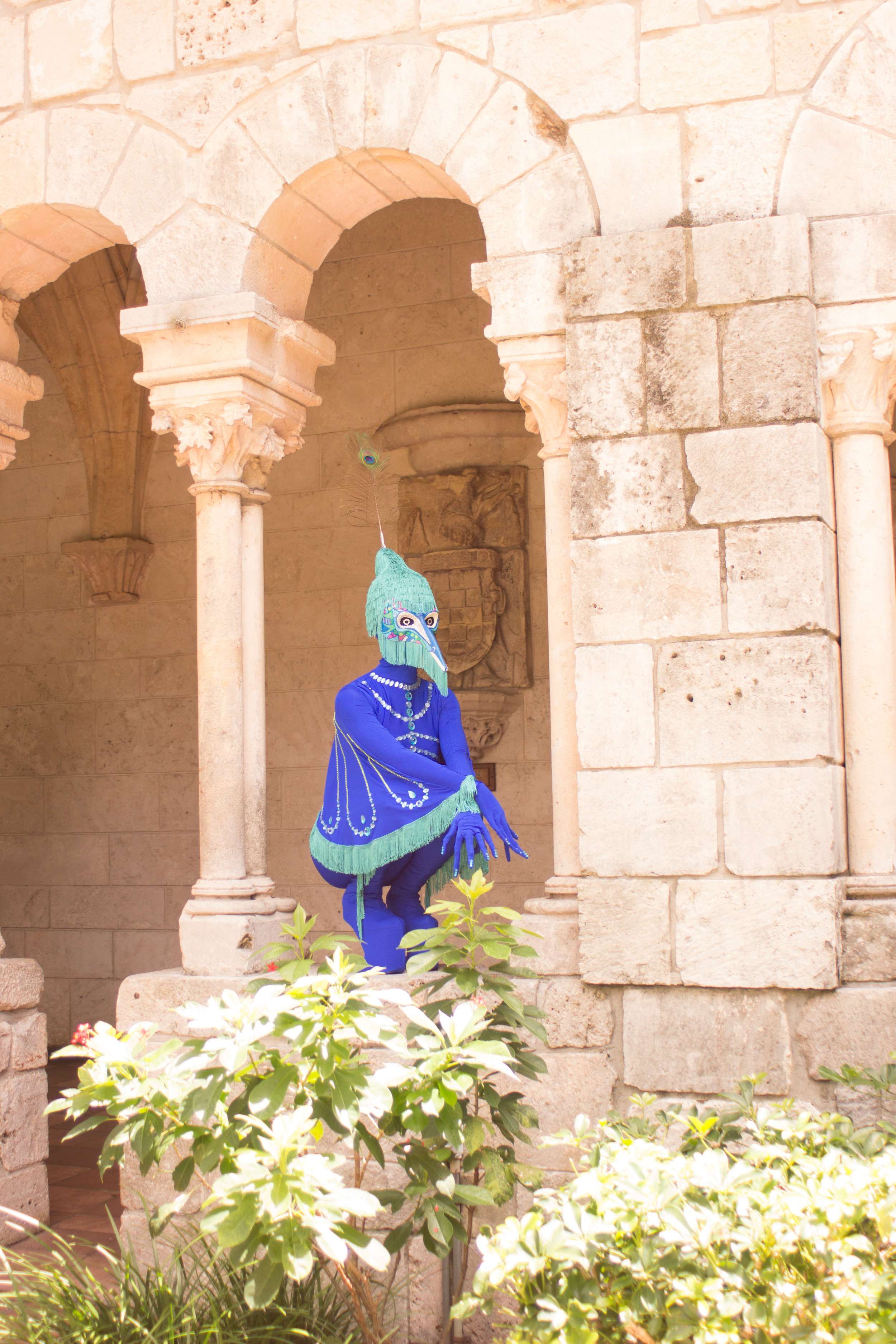 Peacock fairytale-8978.jpg