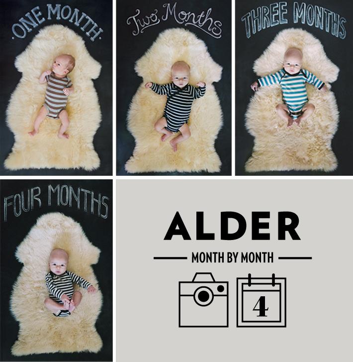 maradawn-alder-month-4-roundup