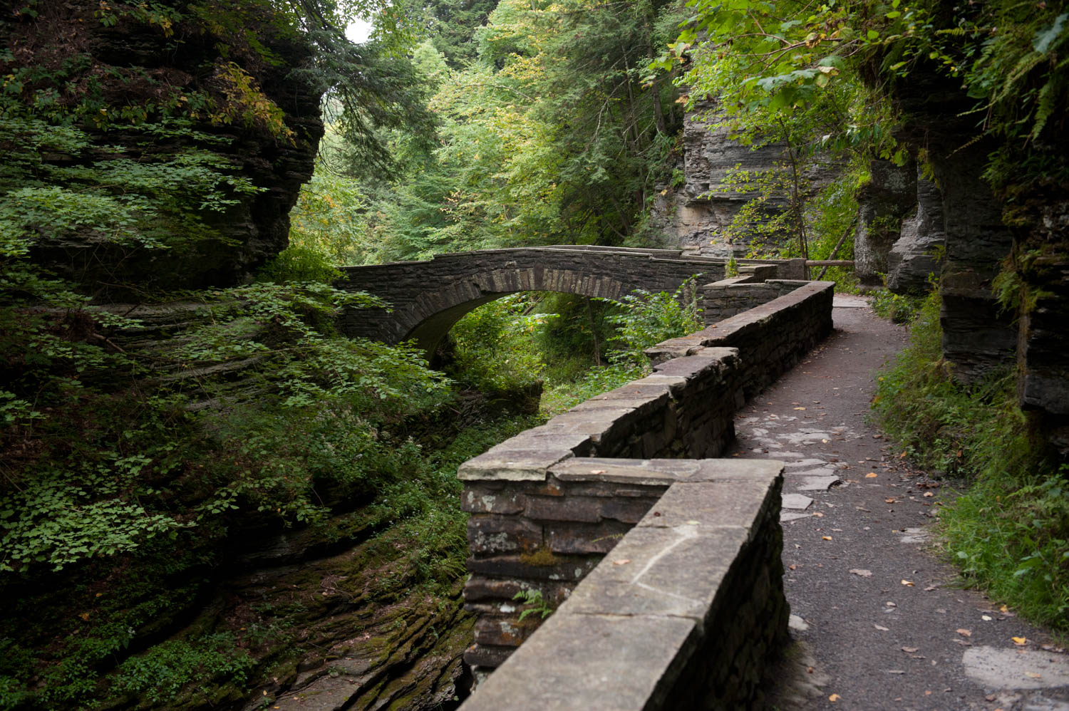 Walking trail near Ithaca