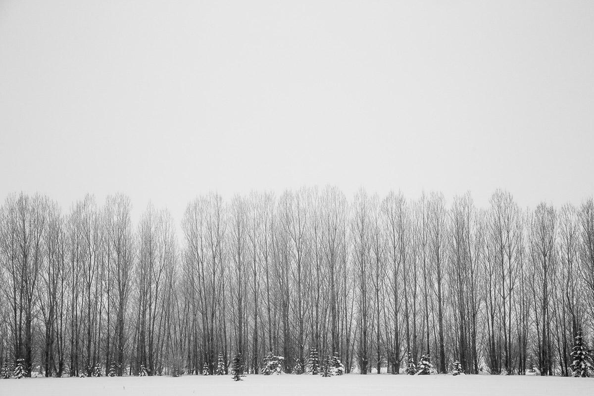 idaho-landscape-photography.jpg