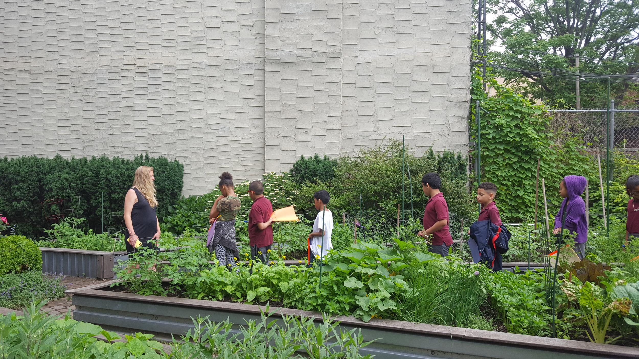 garden clvb.jpg