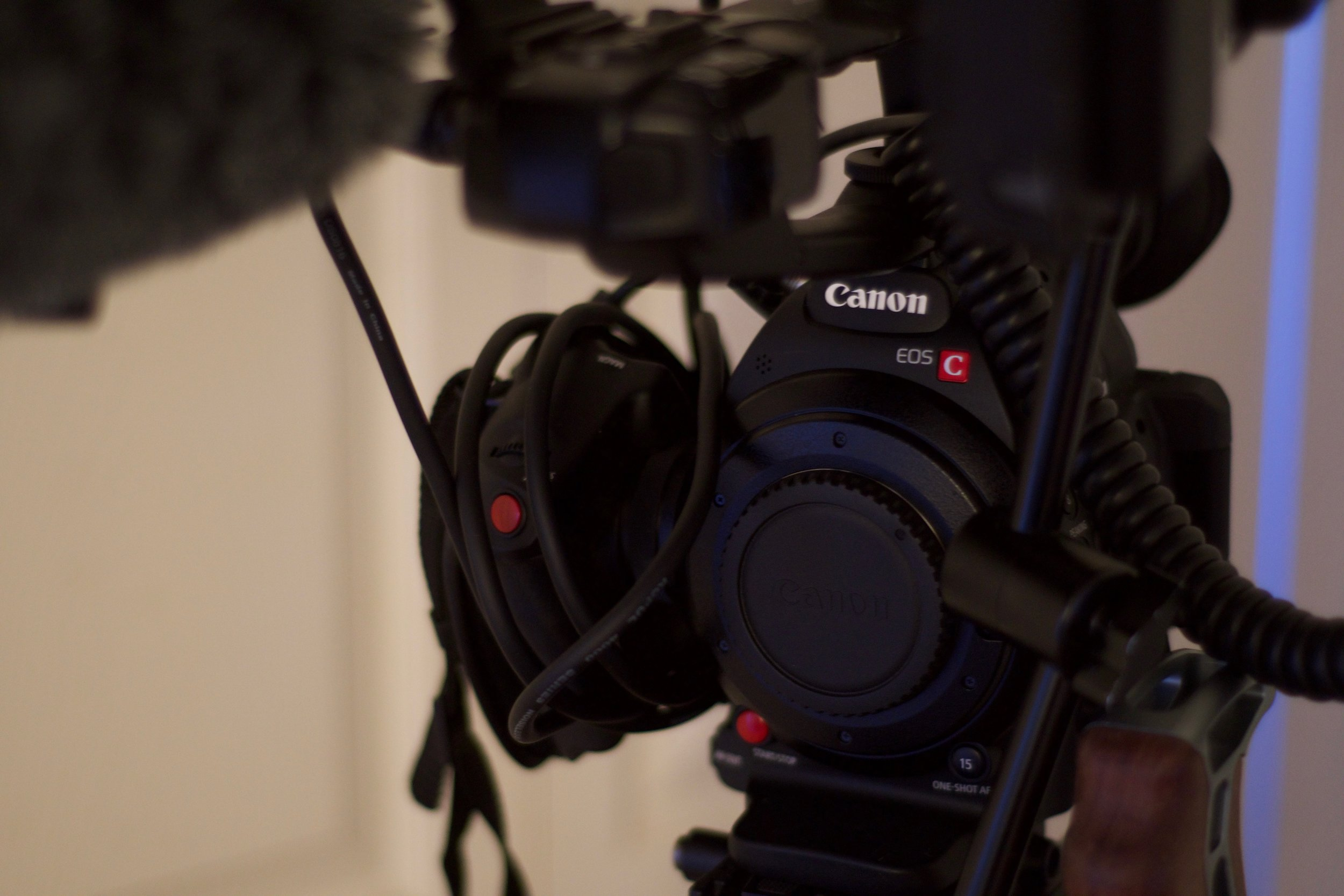 My C100mk ii...Enjoyable camera to operate, and a pleasing image!
